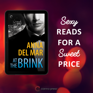 Sexy Reads- At the Brink